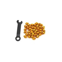 Giant Pinner DH Flat Pedal Replacement Bike Pins - Replacement Pins Set