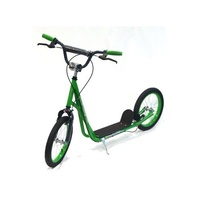 "Holstar - Scooter - 16"" Kids Scooter - Mini Kick Stand - Green/Grey"