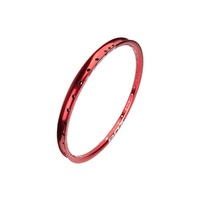 "BOX BMX Rim - Focus 20"" Front Rim - 451mm x 12mm - 28H - Red"