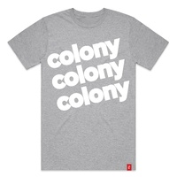 Colony BMX T-Shirt - Lowercase T - Grey - Various Sizes